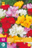 Freesia XL Double Mix 50 Kusů