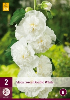 Alcea Rosea Chaters Double White 2 kusy